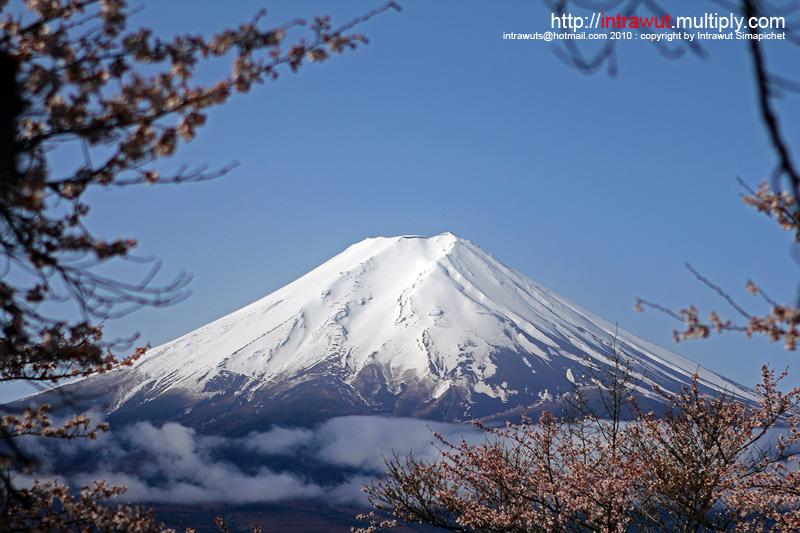 2 Madames in Japan,Japan,ญี่ปุ่น,ครอบครัว,เดินทาง,ท่องเที่ยว,สองคุณนาย,โตเกียว,Tokyo,Osaka,โอซาก้า,เกียวโต,Kyoto,Nara,นาระ,ฟูจิ,Fuji,Kawaguchiko,คาวากูชิโกะ,เจดีย์แดง,Chureito Pagoda,Asakusa,Sensoji,Sumida,Ueno,Odaiba,Rainbow Bridge,อาหารญี่ปุ่น,Japanese Food,Kinkakuji,Kiyomizu-dera,Ginkakuji