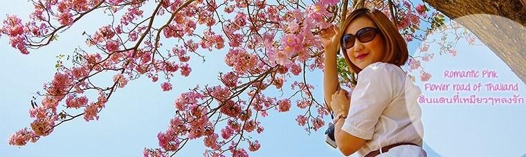 ชมพูพันธุ์ทิพย์, Tabebuia rosea (Bertol.) DC, Bignoniaceae, Thailand, ประเทศไทย, ดอกไม้, ต้นไม้, ดอกไม้สีชมพู, Pind tecoma, Pink trumpet tree, ชมพูอินเดีย, ตาเบบูยา, ธรรมบูชา, ไม้ต้น, สูง 15-25 เมตร, สีชมพูอ่อน, ชมพูสด, ฤดูที่ดอกบาน, Bloom Tiem, ก.พ. เม.ย., กุมภาพันธ์, เมษายน, เกษตรศาสตร์, มหาวิทยาลัย, ม.เกษตร, เกษตรศาสตร์ กำแพงแสน, มหาวิทยาลัยเกษตร, ม.เกษตร กำแพงแสน, สาธิต, สาธิตเกษตร, สาธิต, สาธิตเกษตร กําแพงแสน, เทศกาลดอกไม้, ซากุระเมืองไทย, หม่อมราชวงศ์พันทิพย์ บริพัตร, อเมริกาใต้, ปลูกต้นไม้, ถนนสายดอกไม้, นครปฐม, ข้าวหมูแดง, ข้าวหมูแดงนครปฐม, ปฐมโภชนา, ข้าวหมูกรอบ, ข้าวหน้าเป็ด, kit kat kitten, pantip, พันทิพย์, ชมพูพันธุ์ทิพย์ pantip, 2madames, 2 madames, kit kat kitten fans, เหมียวๆ, เหมียวๆดื้อของที่รัก, เที่ยว, เดินทาง, one day trip, ที่เที่ยวใกล้กรุงเทพ