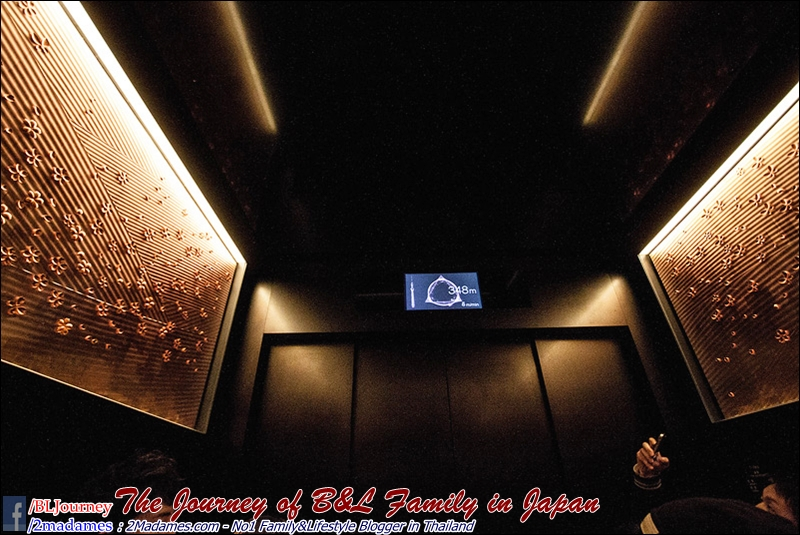Japan - Tokyo Sky Tree- BL Journey  (10)