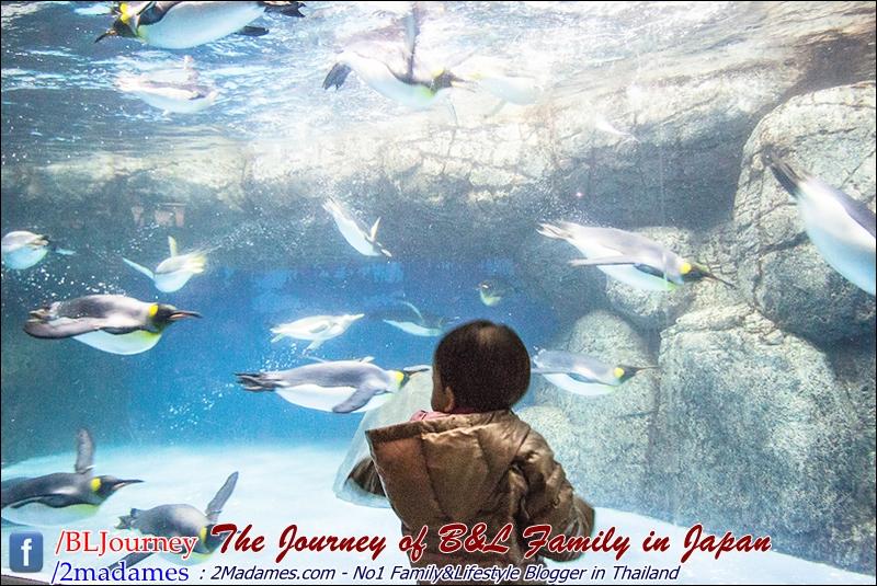 Japan - Yokohama Hakkeikima Sea Paradise - BLJourney (1)