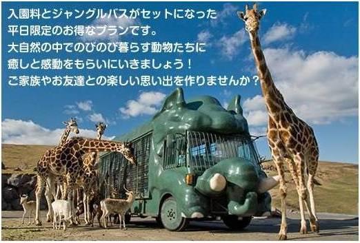 Beppu Attraction (4)