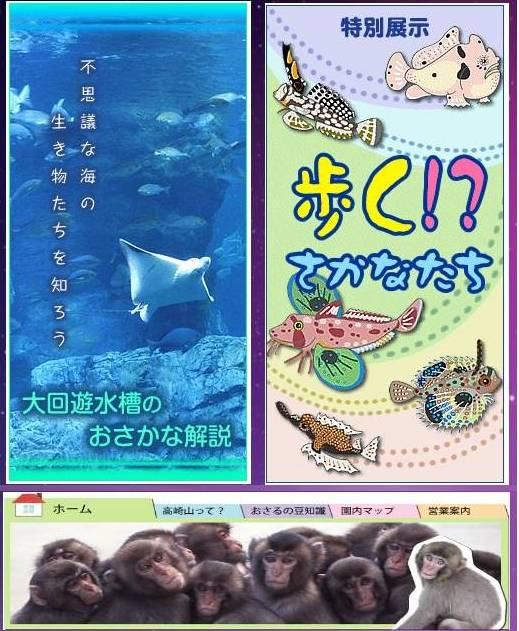 Beppu Attraction (7)