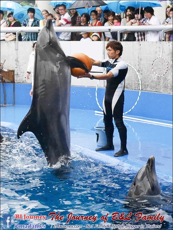 Japan_Kyushu_Fukuoka_Beppu_umitamago aquarium_B&L Family_BLJourney  (7)