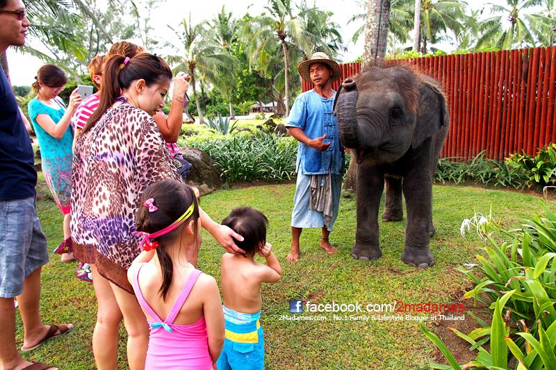 ที่พักสำหรับครอบครัว, โรงแรมสำหรับครอบครัว, รีสอร์ทสำหรับครอบครัว, เที่ยวแบบครอบครัว, รีวิว, review, pantip, Holiday Inn Mai Khao, Villa S เขาตะเกียบ, Holiday Inn Pattaya, Centara Grand Mirage Beach Resort Pattaya, JW Marriott Phuket Resort & Spa, kids club, ห้องพักแบบครอบครัว