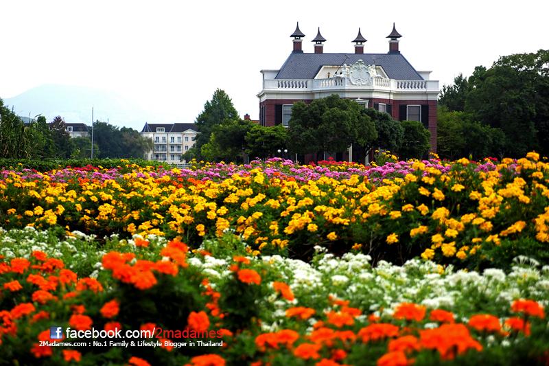 ฮูส เทน บอช, Huis Ten Bosch, The Kingdom of the light, เที่ยวคิวชูด้วยตัวเอง, เที่ยวญี่ปุ่นด้วยตัวเอง, รีวิว, Review, Pantip, sasebo japan, Watermark Hotel, Kyushu