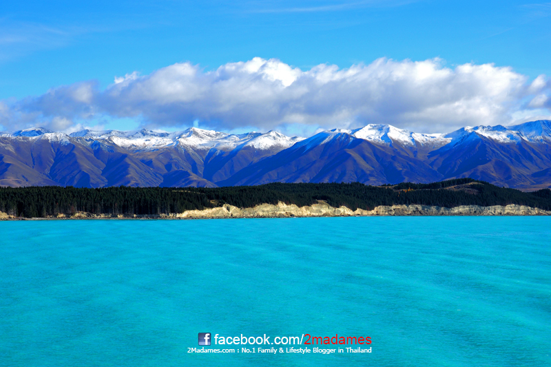 ขับรถบ้านเที่ยวนิวซีแลนด์, เที่ยวนิวซีแลนด์ด้วยตัวเอง, New Zealand เกาะเหนือ เกาะใต้, Britz Campervan, รีวิว, pantip, Queenstown Skyline Luge, Arrowtown, Fox Glacier, Lake Matheson, Whale Watch, akaroa, Shamarra Alpacas, Wanaka, Lake Hawea, Christchurch, Taupo, Agrodome, Rotorua, Rainbow Springs Natural Park, Huka falls, ข้ามเรือ Ferry BlueBridge, วิธีนำอาหารเข้านิวซีแลนด์, Havelock, the mussel pot, Wellington, ไร่ไวน์ Marlborough, The Vines Village, Te Papa Tongarewa, Government Gardens, Sheffield Pie Shop, Castle Hill, Arthur Pass, Otira Via-duct, Hokitika, Puzzling World, Mt.Cook, Lake Tekapo, Mt John Observatory, Church of the Good Shepherd, Cromwell, Jones's Fruit stall