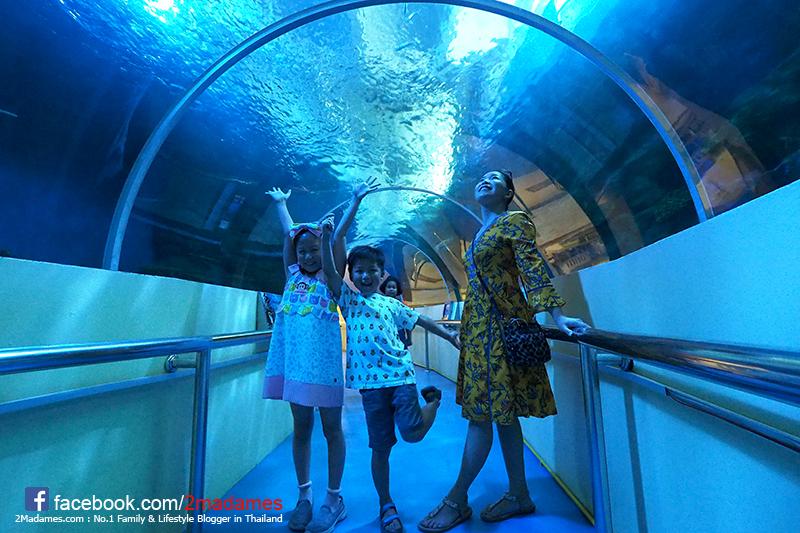 เที่ยวทับสะแก,ประจวบคีรีขันธ์,ณิชาวิลล์ รีสอร์ท,NishaVille Resort,รีวิว,pantip,ชุมชนคลองวาฬ,ร้านมองดูเล,พิพิธภัณฑ์สัตว์น้ำ หว้ากอ,อุทยานวิทยาศาสตร์ พระจอมเหล้า,น้ำตกห้วยยาง,เกาะจาน,ตลาดด่านสิงขรชายแดนพม่า,วัดอ่างสุวรรณ,โบสถ์ไม้ตาล,สปาทรายริมทะเล