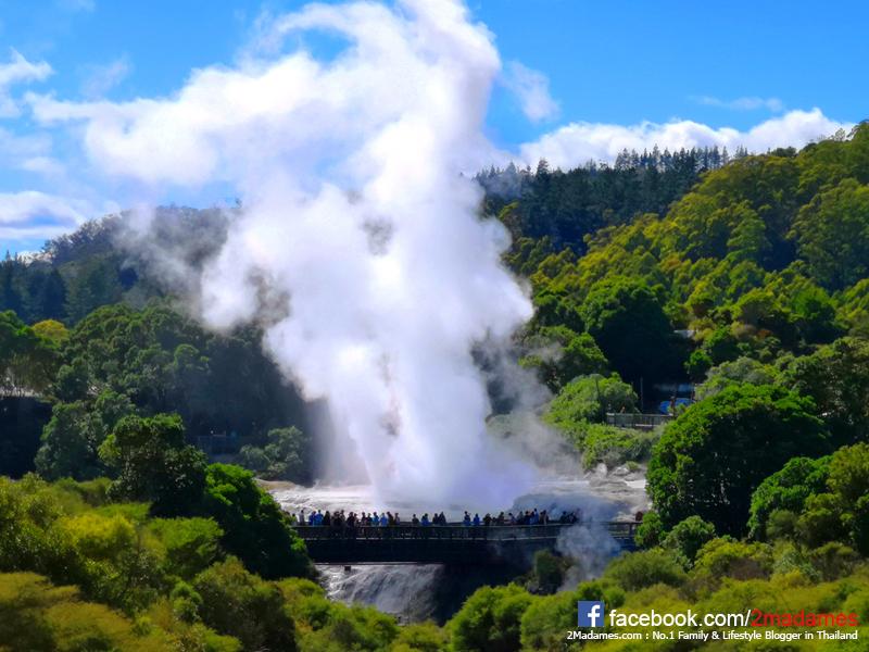 เที่ยวนิวซีแลนด์,New Zealand,รีวิว,pantip,Rotorua,Queenstown,Wanaka,Franz Josef Glacier,Greymouth,Chirstchurch,Air New Zealand,EconomySkyCouch,Hobbiton Movie Set,OGO Rotorua,TE PUIA,MUD SPA,Hells Gate,Redwood Treewalk,TSS Earnslaw,Walter Peak,SHOTOVER JET,ขึ้นเฮลิคอปเตอร์ชมวิว Milford Sound,Ziptrek Moa 4-Line Ecotours,Skyline Gondola,Cardrona,Ridgeline Adventure 4WD Safari,TranzAlpine,SilverKris Lounge,Singapore Airlines